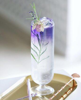 Simply Gin Tonic