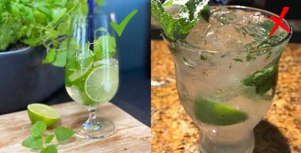 foto cocktail con menta