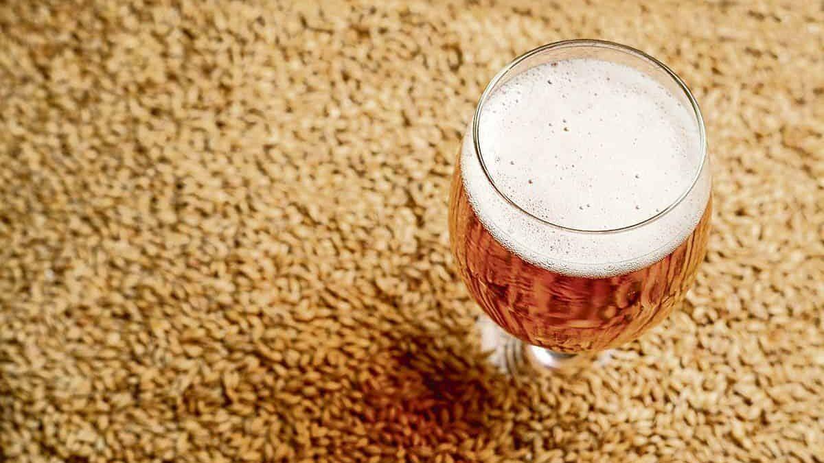 Malto-di-birra