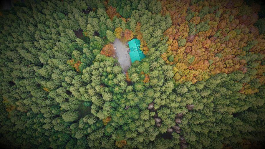 Casa nel bosco Lagdei